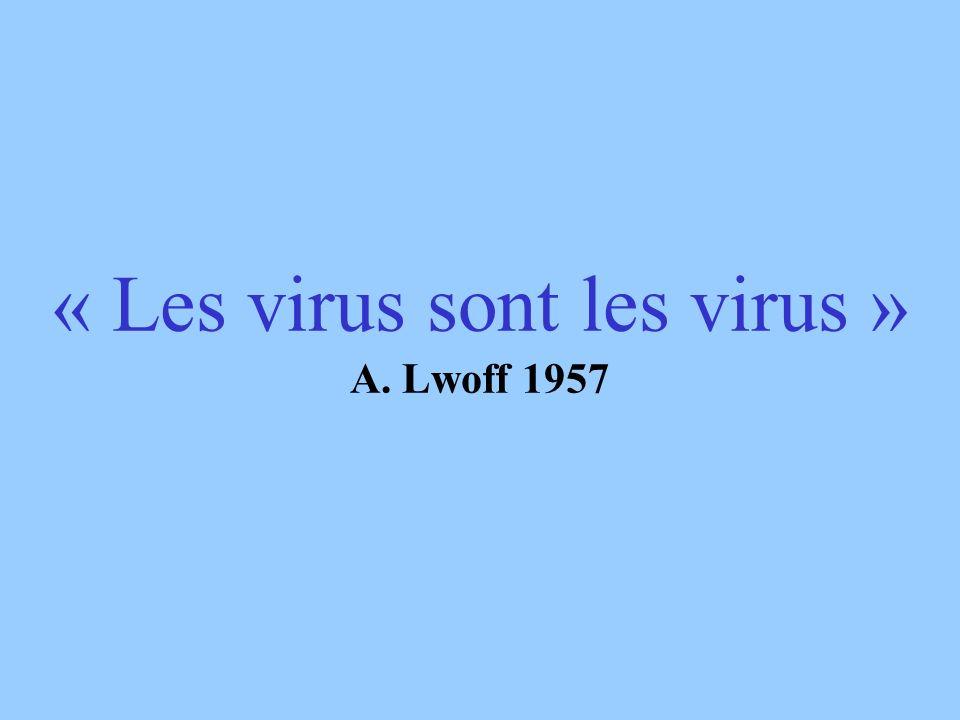 Virus du SARS Virus herpes simplex (HSV)