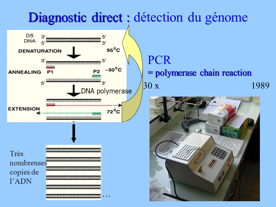 Diagnostic direct : Diagnostic direct : détection du génome DNA polymerase PCR = polymerase chain reaction Très nombreuses copies de lADN … 30 x1989