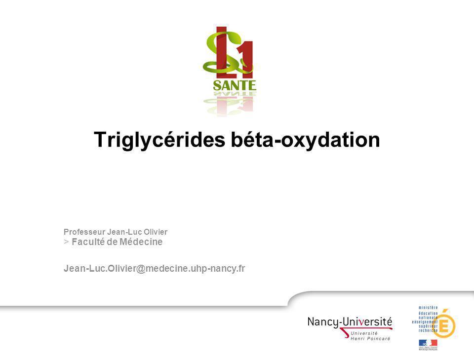 Triglycérides et β-oxydation Des structures combinant des éléments simples COO - Lipide simple amphiphile Formation de trois liaisons esters Acides gras Triglycérides Glycérol = trialcool HO
