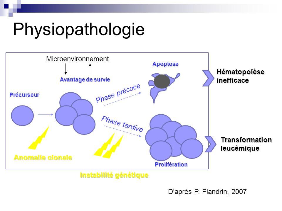 Physiopathologie Apoptose cellules hématopoïétiques Excès dapoptose compensée par une prolifération accue des progéniteurs CD34+ (Parker, Blood, 2000) Surtout lignée érythroïde Fas Ligand surexprimé (Claessens, Blood, 2005) Activation caspases (Boudard, Leukemia, 2002) Implication mitochondries (Terhanchi, Blood, 2003) Déséquilibre de protéines pro/anti-apoptotiques (Campos, Leuk Lymphoma, 2002)