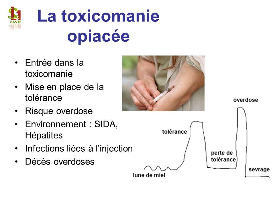 La toxicomanie opiacée Entrée dans la toxicomanie Mise en place de la tolérance Risque overdose Environnement : SIDA, Hépatites Infections liées à lin