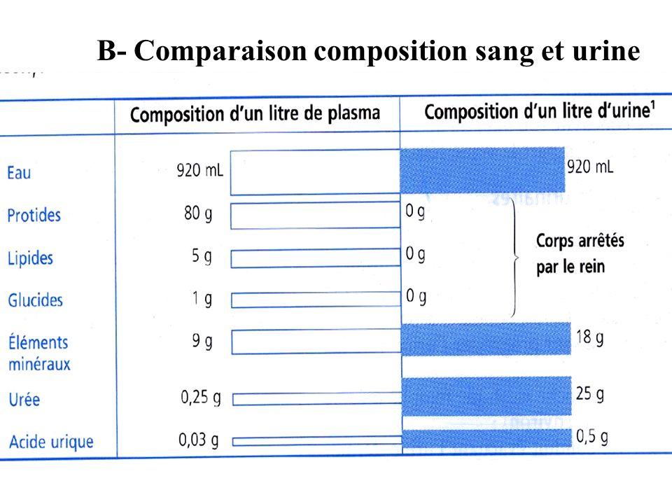 B- Comparaison composition sang et urine