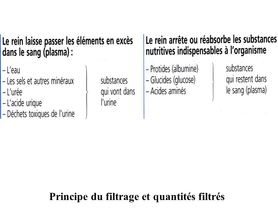 Principe du filtrage et quantités filtrés