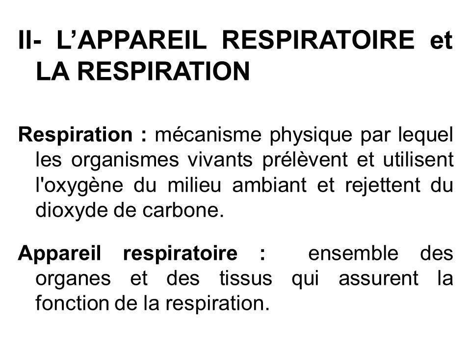 II- LAPPAREIL RESPIRATOIRE et LA RESPIRATION Respiration : mécanisme physique par lequel les organismes vivants prélèvent et utilisent l'oxygène du mi
