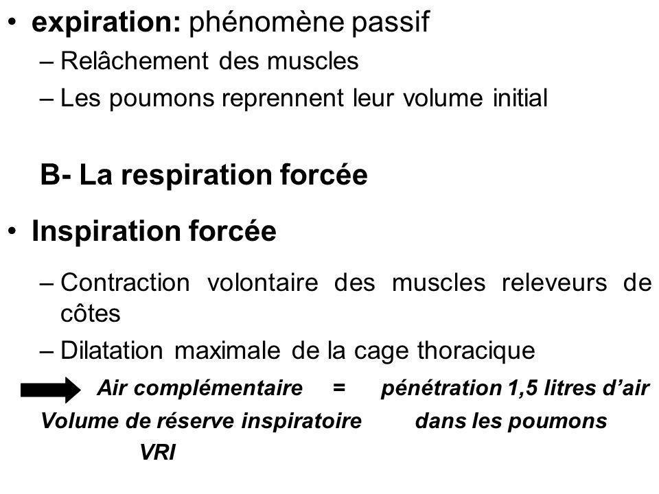 expiration: phénomène passif –Relâchement des muscles –Les poumons reprennent leur volume initial B- La respiration forcée Inspiration forcée –Contrac