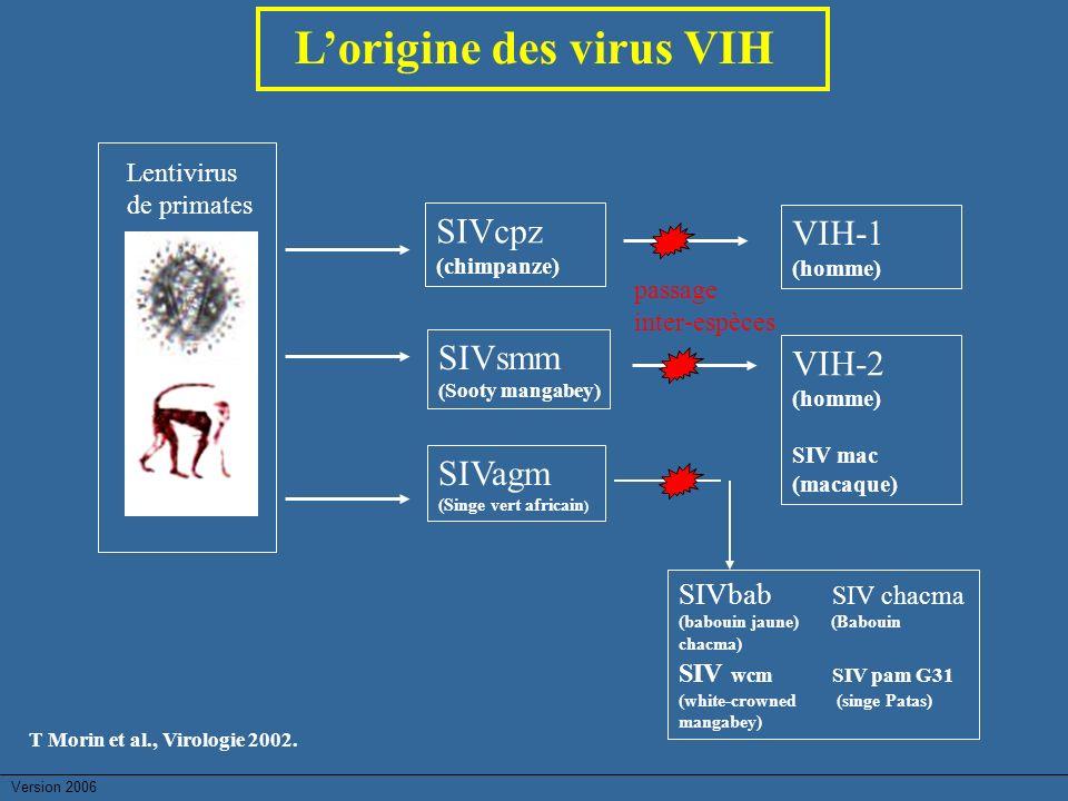 Lorigine des virus VIH Lentivirus de primates SIVcpz (chimpanze) SIVsmm (Sooty mangabey) SIVagm (Singe vert africain ) VIH-1 (homme) VIH-2 (homme) SIV