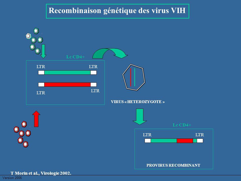 Recombinaison génétique des virus VIH LTR VIRUS « HETEROZYGOTE » Lc CD4+ LTR Lc CD4+ PROVIRUS RECOMBINANT T Morin et al., Virologie 2002.