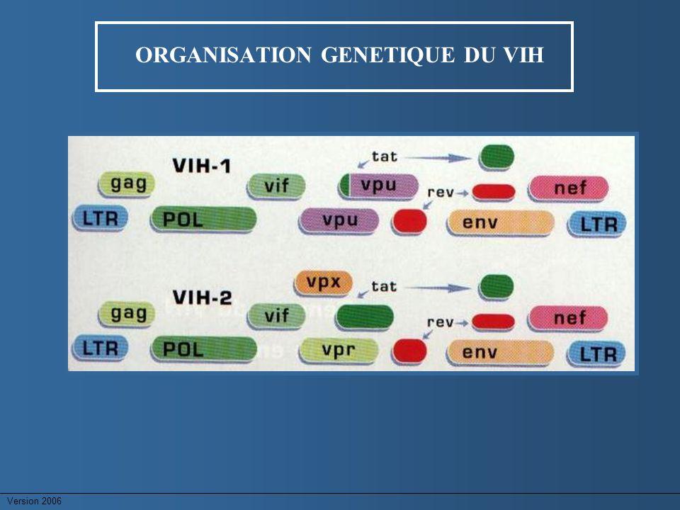 Version 2006 VARIABILITE DU VIH-1 & QUASIESPECES Une mutation aléatoire toutes les 10 000 bases (une mutation/génome rétrotranscript) Variabilité génétique sans traitement ARV QUASIESPECES = différents variants viraux Variant majoritaire 90% Variants minoritaires 10% Génétique 4 à 25% Transcriptase inverse
