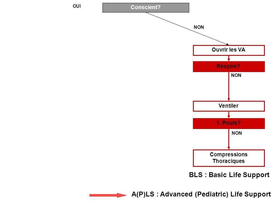 Conscient? Ouvrir les VA Respire? 1. Pouls? Ventiler Compressions Thoraciques NON OUI NON BLS : Basic Life Support A(P)LS : Advanced (Pediatric) Life