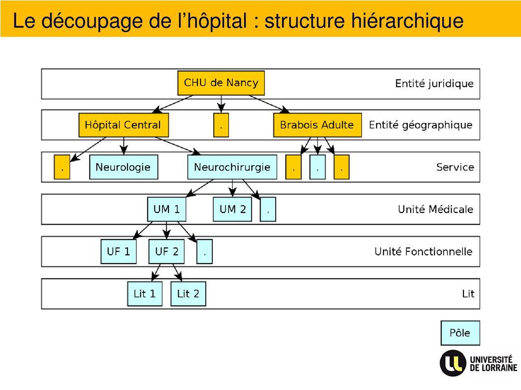 Le découpage de lhôpital : structure hiérarchique