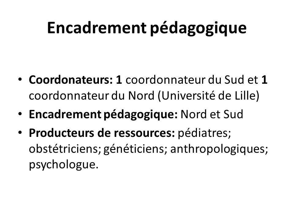 Encadrement pédagogique Coordonateurs: 1 coordonnateur du Sud et 1 coordonnateur du Nord (Université de Lille) Encadrement pédagogique: Nord et Sud Pr