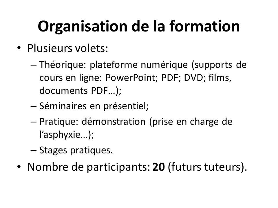 Organisation de la formation Plusieurs volets: – Théorique: plateforme numérique (supports de cours en ligne: PowerPoint; PDF; DVD; films, documents P