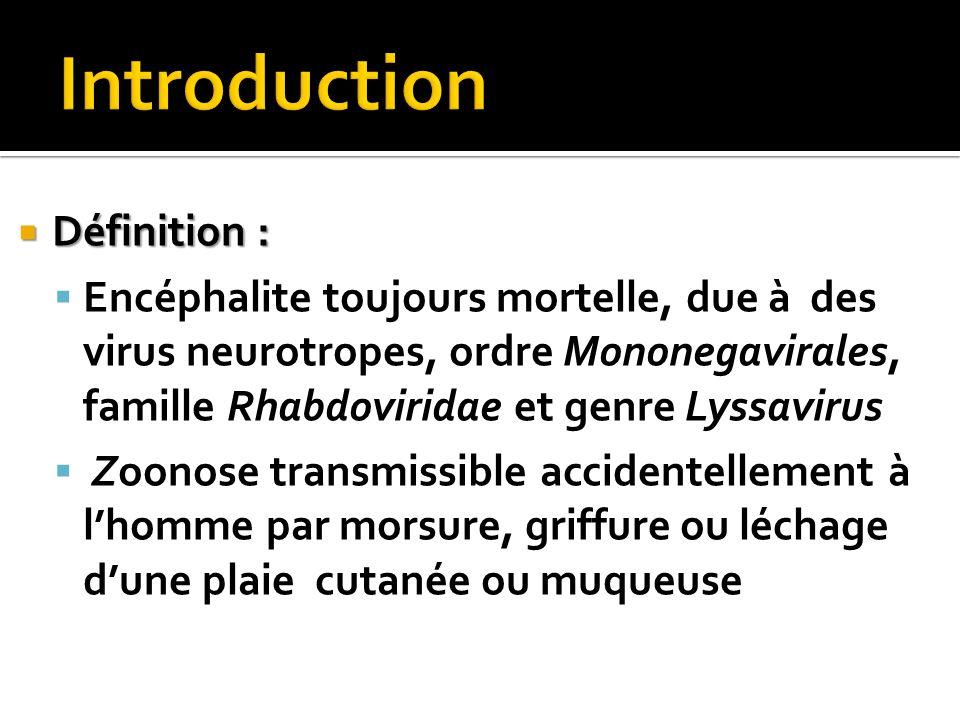 Définition : Définition : Encéphalite toujours mortelle, due à des virus neurotropes, ordre Mononegavirales, famille Rhabdoviridae et genre Lyssavirus