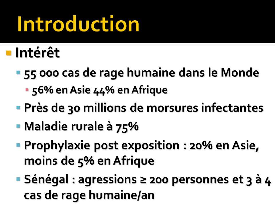 Intérêt Intérêt 55 000 cas de rage humaine dans le Monde 55 000 cas de rage humaine dans le Monde 56% en Asie 44% en Afrique 56% en Asie 44% en Afriqu