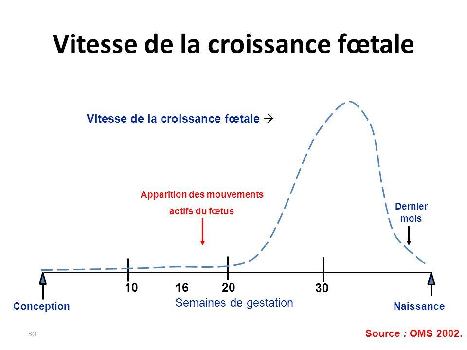 30 ConceptionNaissance 203010 Semaines de gestation 16 Vitesse de la croissance fœtale Apparition des mouvements actifs du fœtus Source : OMS 2002. De