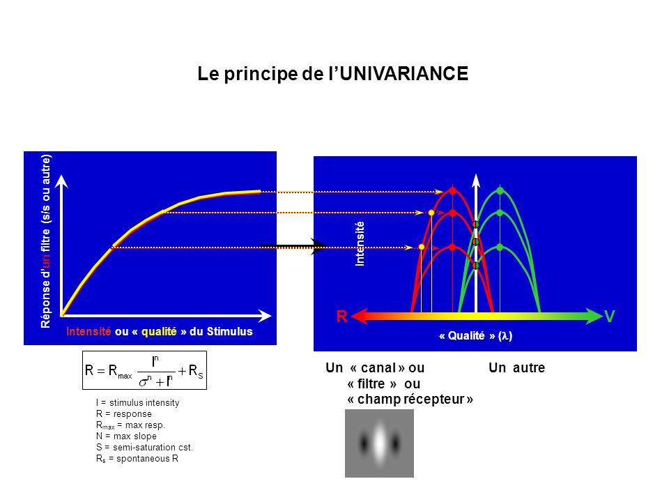 « Qualité » ( ) Intensité Intensité ou « qualité » du Stimulus Réponse dun filtre (s/s ou autre) Le principe de lUNIVARIANCE Un « canal » ou « filtre