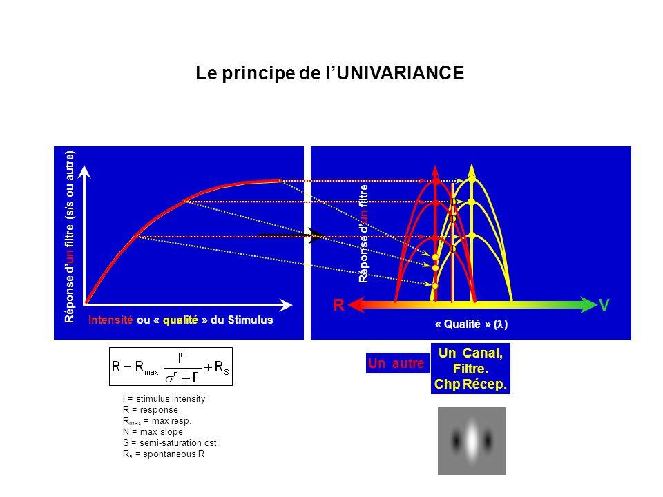 « Qualité » ( ) Intensité ou « qualité » du Stimulus Réponse dun filtre (s/s ou autre) Le principe de lUNIVARIANCE Un Canal, Filtre. Chp Récep. RV I =