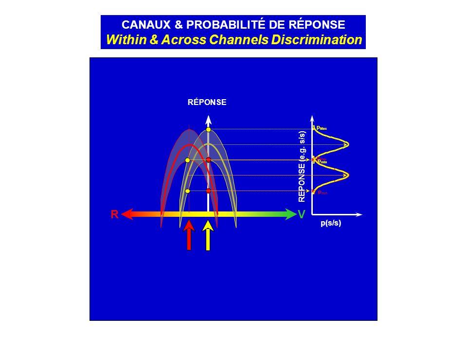 RV RÉPONSE CANAUX & PROBABILITÉ DE RÉPONSE Within & Across Channels Discrimination p(s/s) REPONSE (e.g. s/s) p min p Max p min p Max