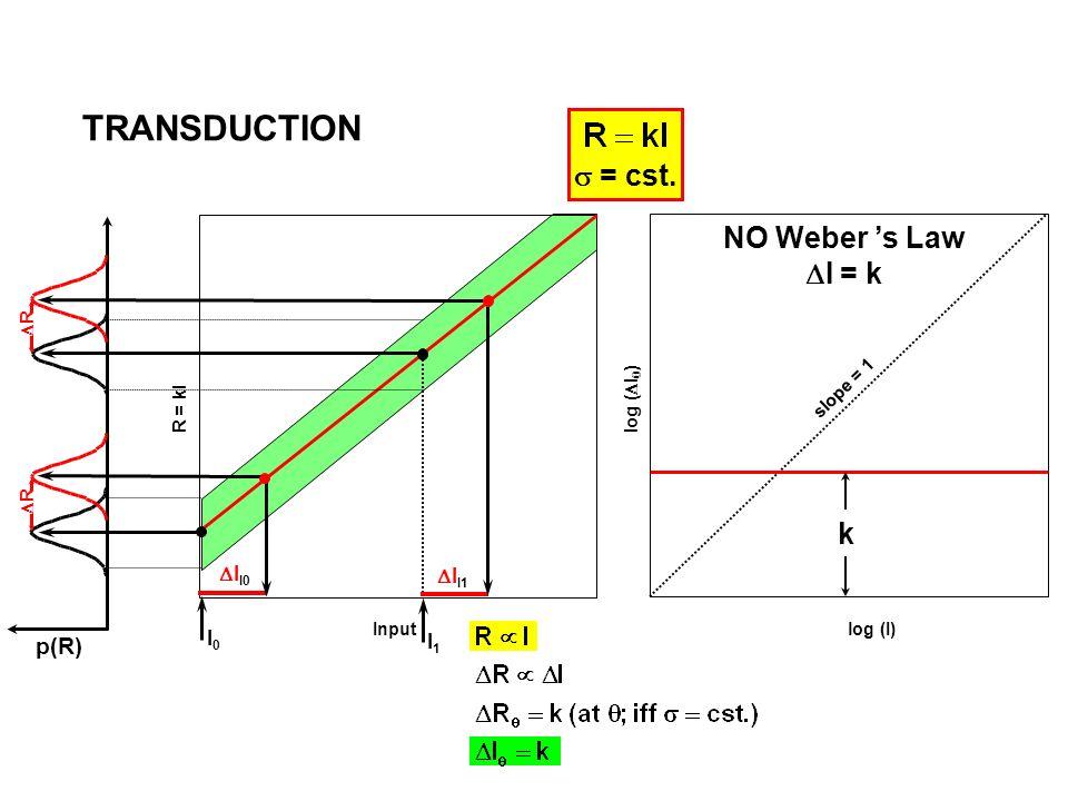 I0I0 I1I1 = cst. log (I) slope = 1 NO Weber s Law I = k k Input R = kI p(R) I I1 R I I0 R TRANSDUCTION