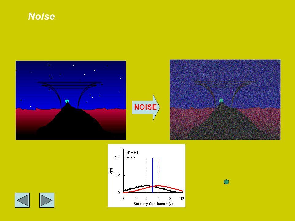 NOISE Noise