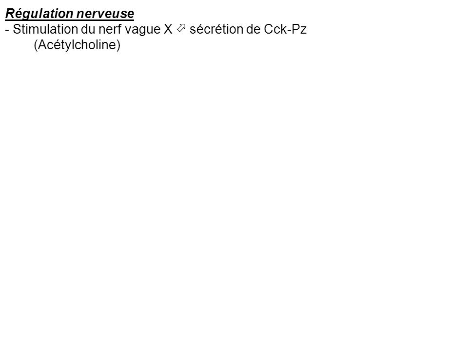 Régulation nerveuse - Stimulation du nerf vague X sécrétion de Cck-Pz (Acétylcholine)
