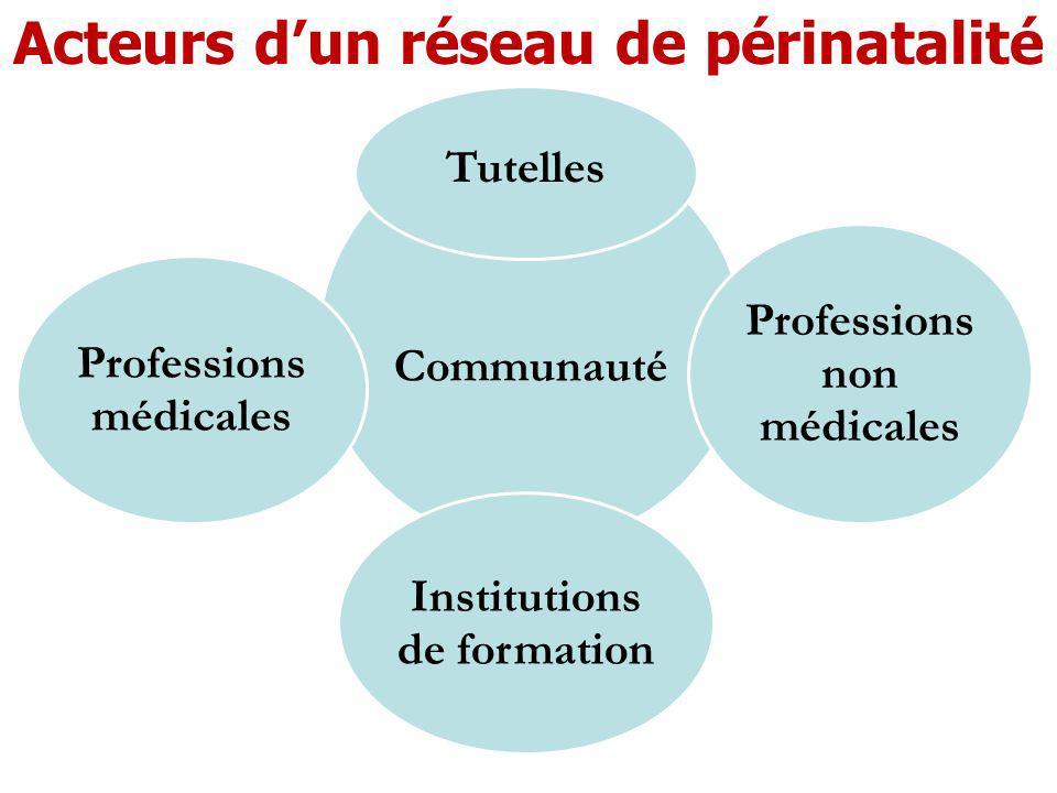 Communauté Tutelles Professions non médicales Institutions de formation Professions médicales Acteurs dun réseau de périnatalité
