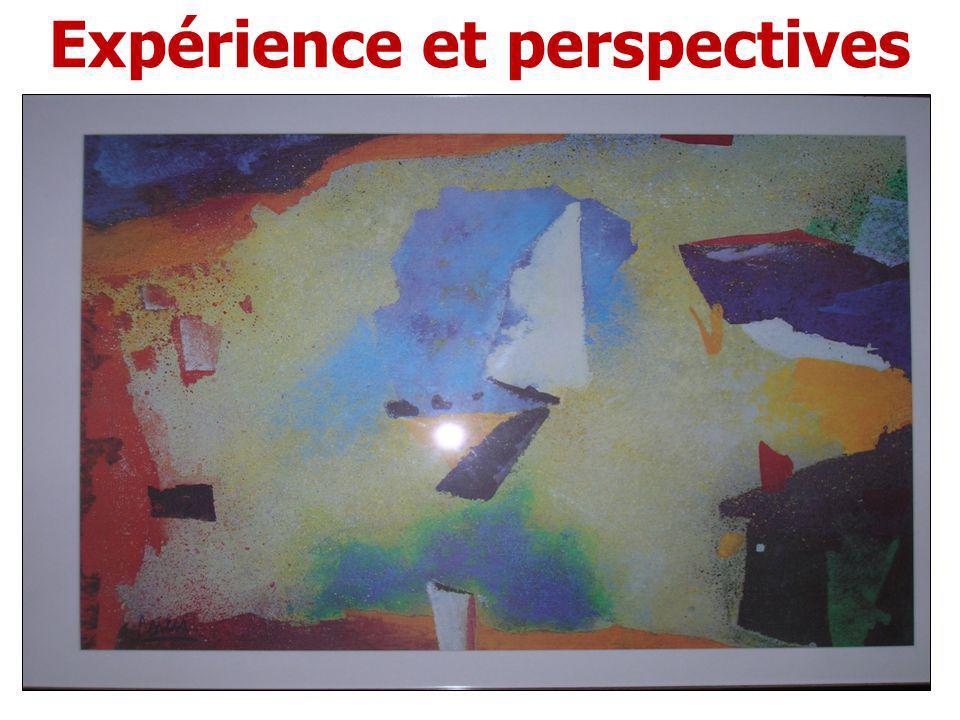 Expérience et perspectives