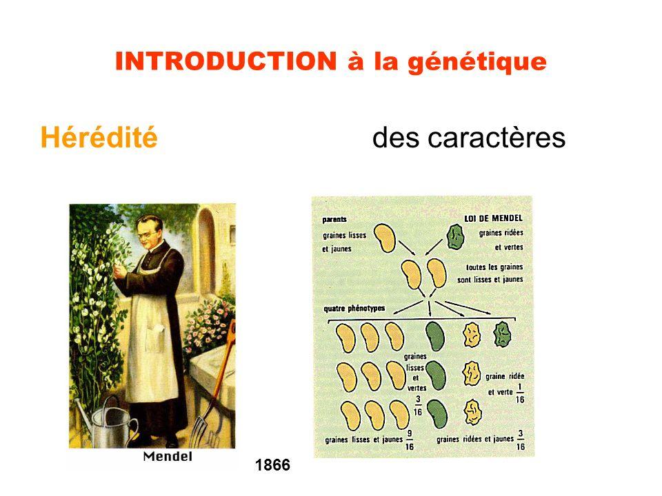 Prérequis Nature du support de l IG Mode de réplication semi-conservatif Relation gène/caractère Elucidation du code génétique Notion de gène