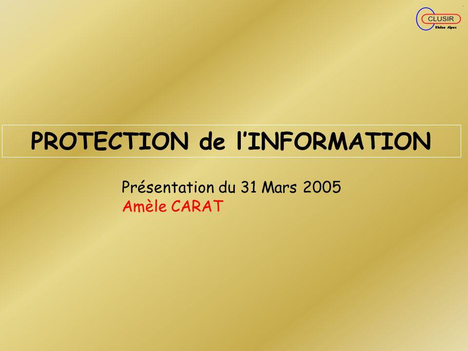 PROTECTION de lINFORMATION Présentation du 31 Mars 2005 Amèle CARAT