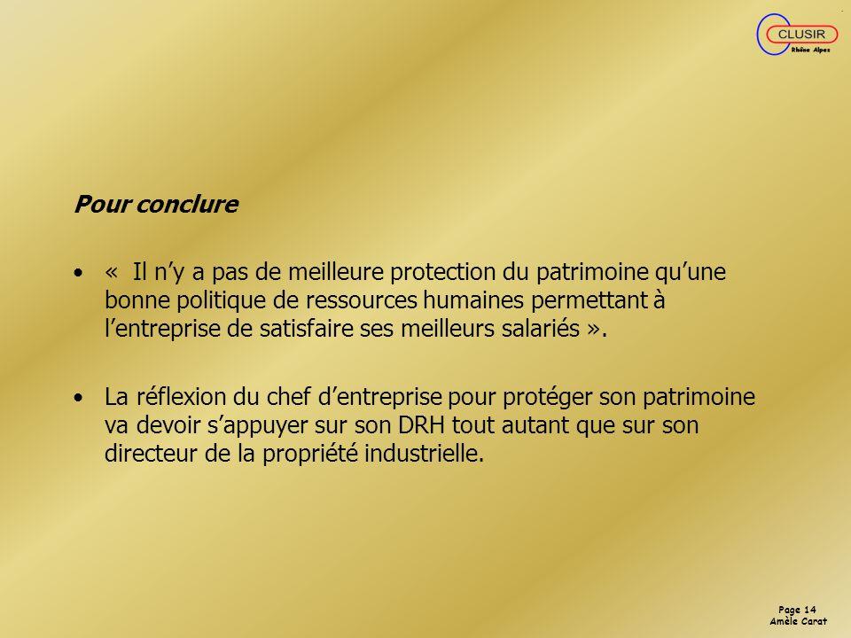 Page 13 Amèle Carat STRATEGIE DE PROTECTION DE LIMAGE DE LENTREPRISE Le droit des marques se prête moins à une approche stratégique que le droit des brevets.