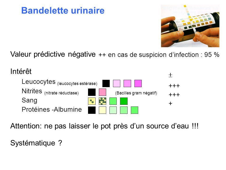 Bandelette urinaire Valeur prédictive négative ++ en cas de suspicion dinfection : 95 % Intérêt Leucocytes (leucocytes estérase) Nitrites (nitrate réd