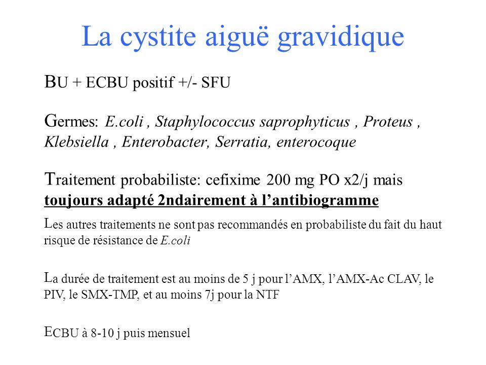La cystite aiguë gravidique B U + ECBU positif +/- SFU G ermes: E.coli, Staphylococcus saprophyticus, Proteus, Klebsiella, Enterobacter, Serratia, ent