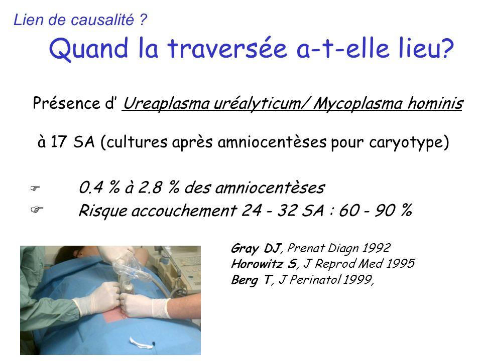 Quand la traversée a-t-elle lieu? Présence d Ureaplasma uréalyticum/ Mycoplasma hominis à 17 SA (cultures après amniocentèses pour caryotype) 0.4 % à
