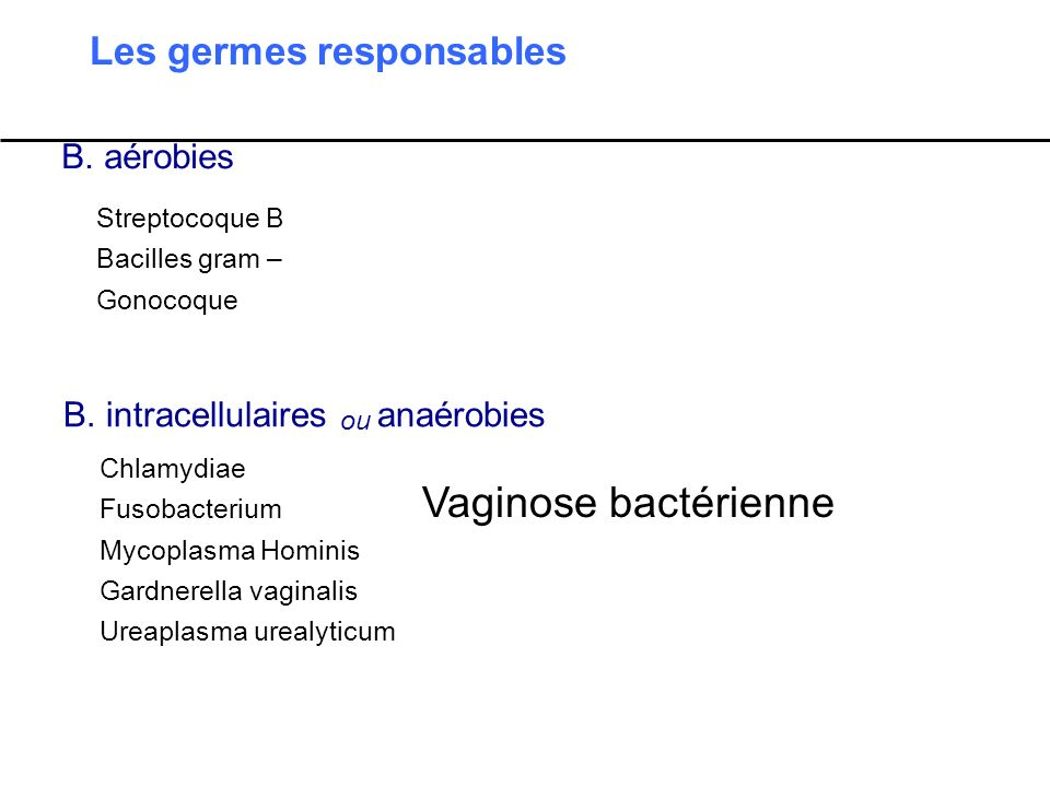 Les germes responsables B. aérobies B. intracellulaires ou anaérobies Streptocoque B Bacilles gram – Gonocoque Chlamydiae Fusobacterium Mycoplasma Hom