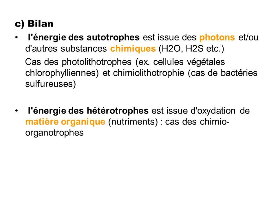 c) Bilan l'énergie des autotrophes est issue des photons et/ou d'autres substances chimiques (H2O, H2S etc.) Cas des photolithotrophes (ex. cellules v