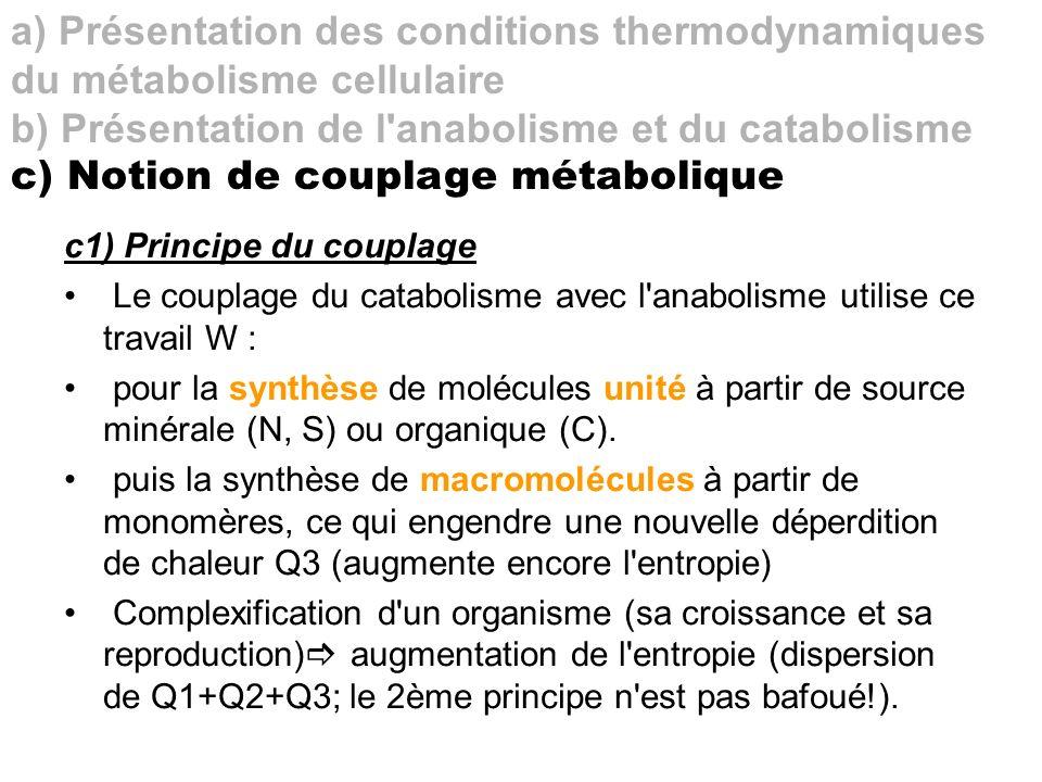 c1) Principe du couplage Le couplage du catabolisme avec l'anabolisme utilise ce travail W : pour la synthèse de molécules unité à partir de source mi