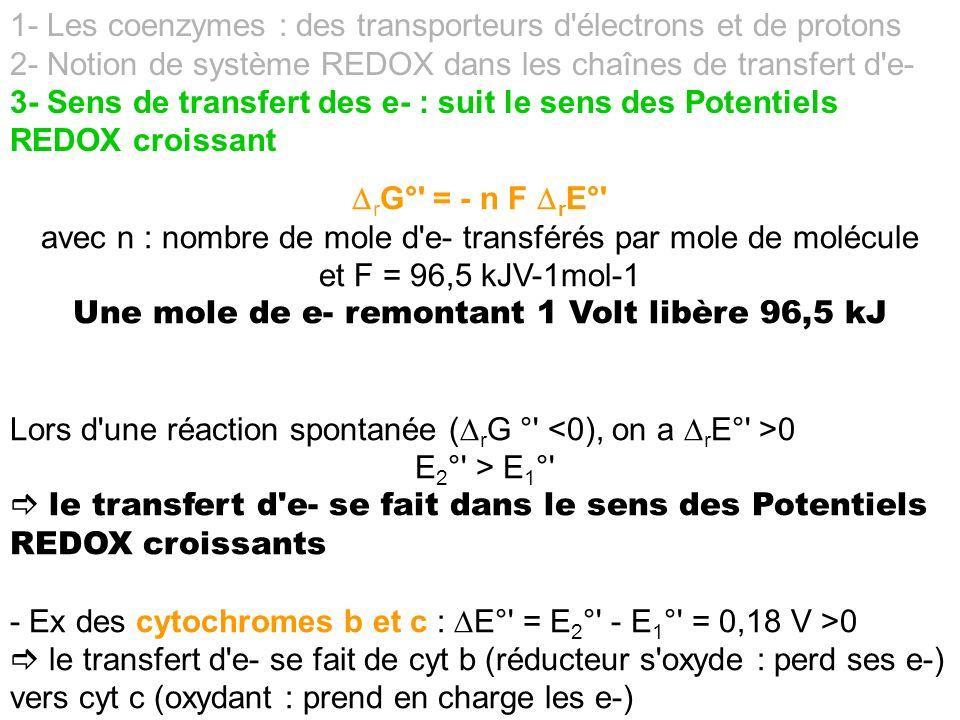1- Les coenzymes : des transporteurs d'électrons et de protons 2- Notion de système REDOX dans les chaînes de transfert d'e- 3- Sens de transfert des