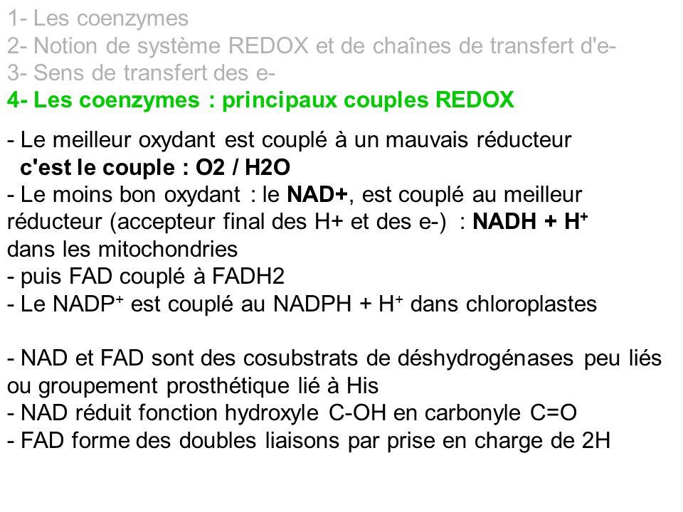 1- Les coenzymes 2- Notion de système REDOX et de chaînes de transfert d'e- 3- Sens de transfert des e- 4- Les coenzymes : principaux couples REDOX -