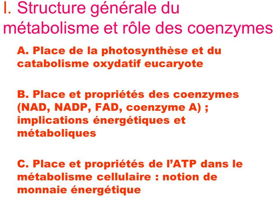 I. Structure générale du métabolisme et rôle des coenzymes A. Place de la photosynthèse et du catabolisme oxydatif eucaryote B. Place et propriétés de