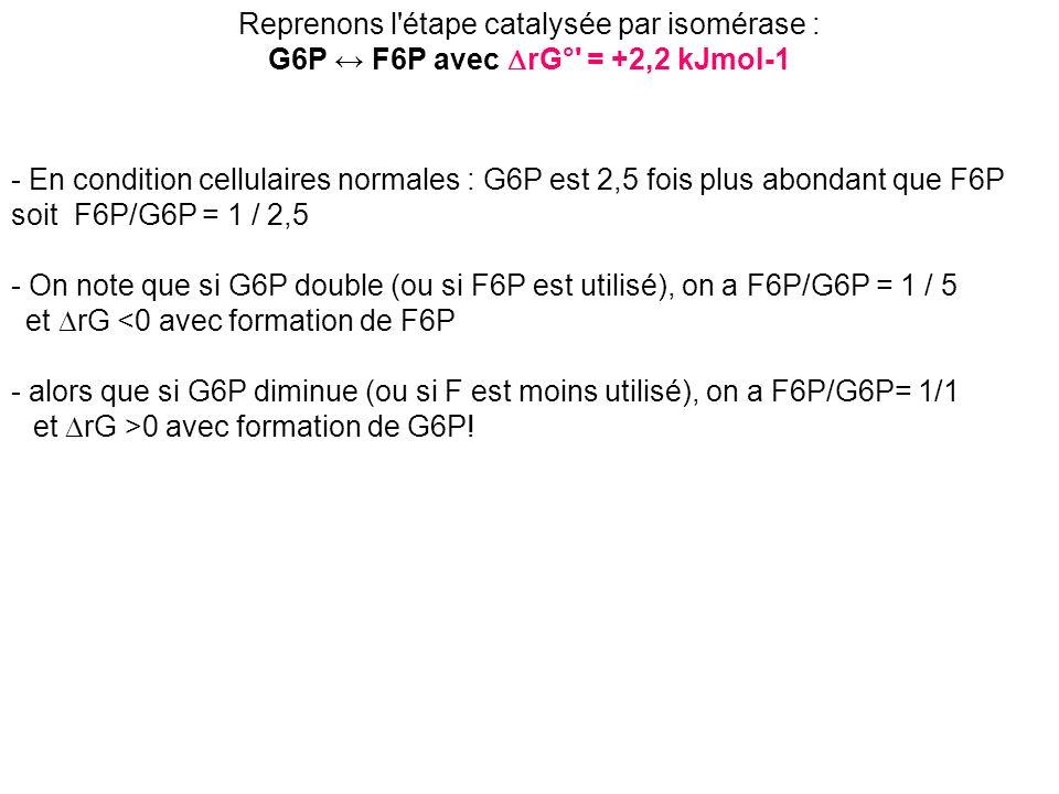- En condition cellulaires normales : G6P est 2,5 fois plus abondant que F6P soit F6P/G6P = 1 / 2,5 - On note que si G6P double (ou si F6P est utilisé