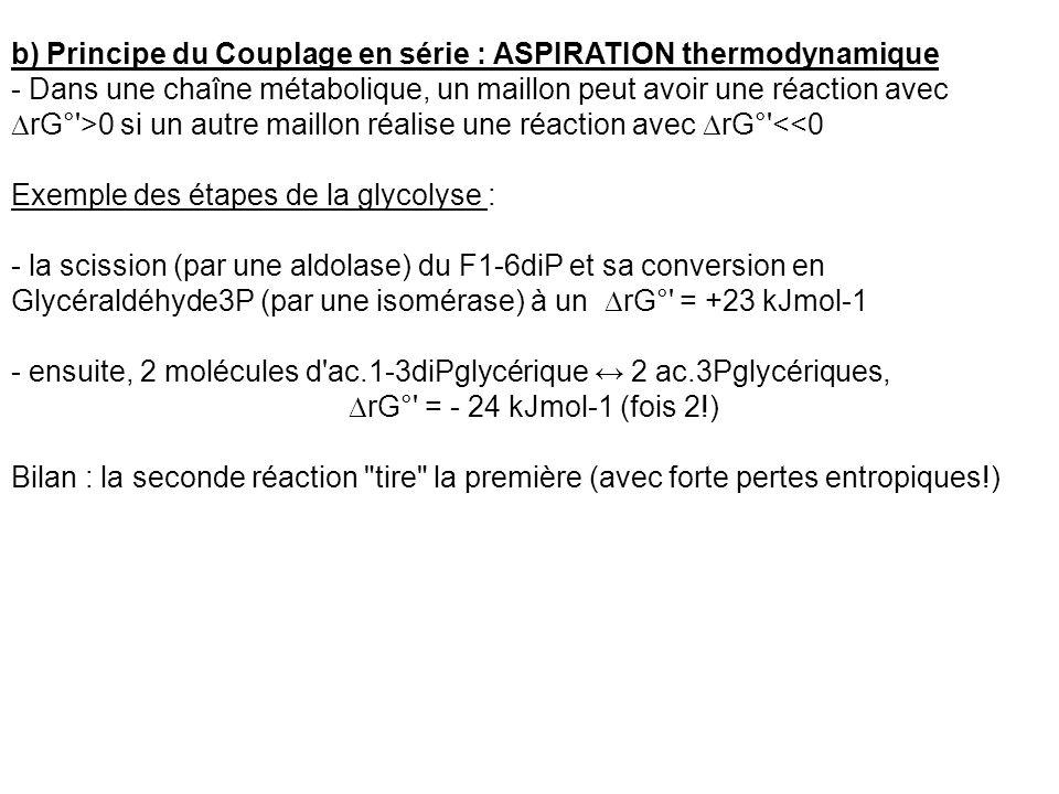 b) Principe du Couplage en série : ASPIRATION thermodynamique - Dans une chaîne métabolique, un maillon peut avoir une réaction avec rG°'>0 si un autr