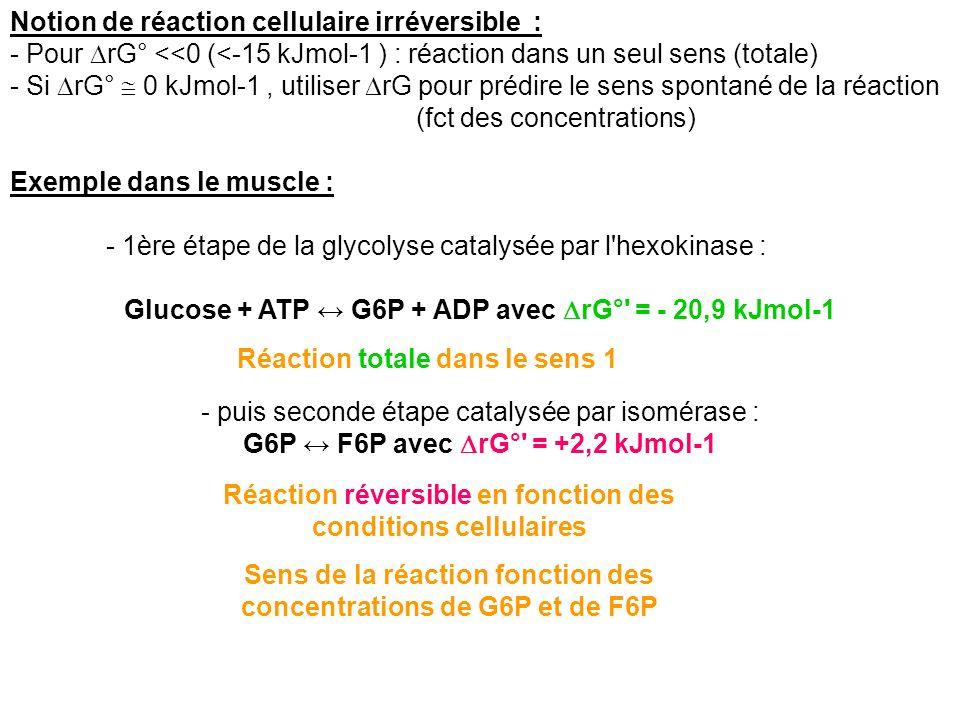 Notion de réaction cellulaire irréversible : - Pour rG° <<0 (<-15 kJmol-1 ) : réaction dans un seul sens (totale) - Si rG° 0 kJmol-1, utiliser rG pour