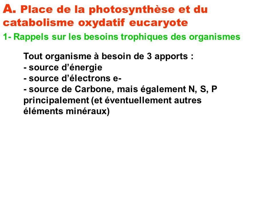 a) Cas des organismes supérieurs (eucaryotes) a1)- Les végétaux chlorophylliens utilisent : - La lumière comme source dénergie : photosynthèse - Leau comme source de- : lithotrophes photolyse de leau : H2O donne 2H+ + 2e-.