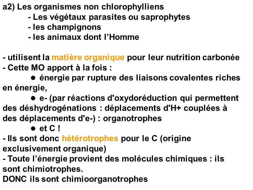 b) Grande diversité trophique chez les procaryotes (Eubactéries, Cyanobactéries, Archéobactéries) - Source dénergie : lumière = phototrophie ou molécules organiques = chimiotrophie - Source de- : molécules minérales = lithotrophie ; molécules organiques = organotrophie - Source de C : CO2 ou MO