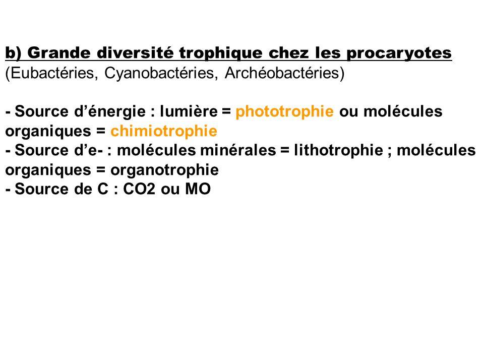 b) Grande diversité trophique chez les procaryotes (Eubactéries, Cyanobactéries, Archéobactéries) - Source dénergie : lumière = phototrophie ou molécu