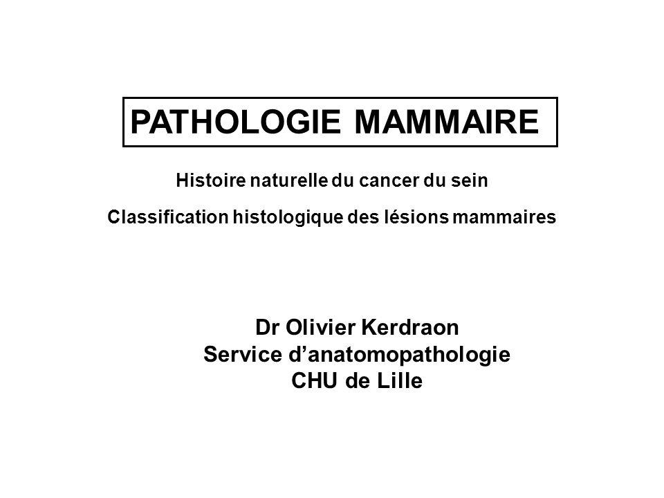 PATHOLOGIE MAMMAIRE Histoire naturelle du cancer du sein Classification histologique des lésions mammaires Dr Olivier Kerdraon Service danatomopatholo
