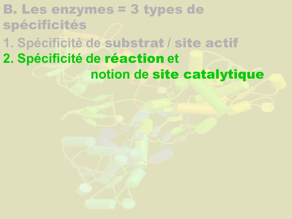 B. Les enzymes = 3 types de spécificités 1. Spécificité de substrat / site actif 2. Spécificité de réaction et notion de site catalytique