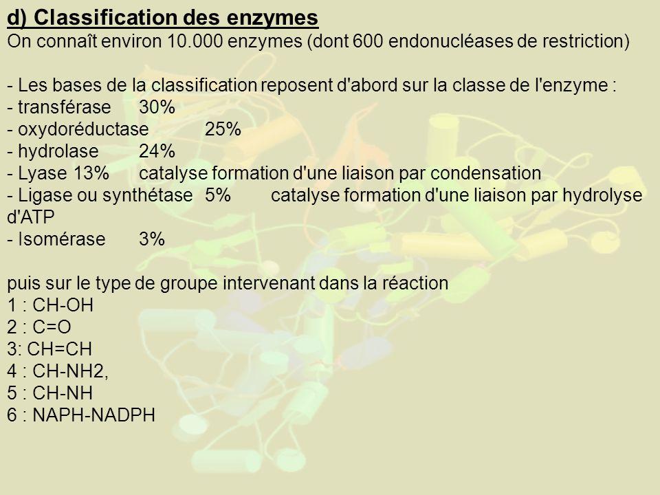 d) Classification des enzymes On connaît environ 10.000 enzymes (dont 600 endonucléases de restriction) - Les bases de la classification reposent d abord sur la classe de l enzyme : - transférase 30% - oxydoréductase 25% - hydrolase 24% - Lyase 13%catalyse formation d une liaison par condensation - Ligase ou synthétase 5% catalyse formation d une liaison par hydrolyse d ATP - Isomérase 3% puis sur le type de groupe intervenant dans la réaction 1 : CH-OH 2 : C=O 3: CH=CH 4 : CH-NH2, 5 : CH-NH 6 : NAPH-NADPH