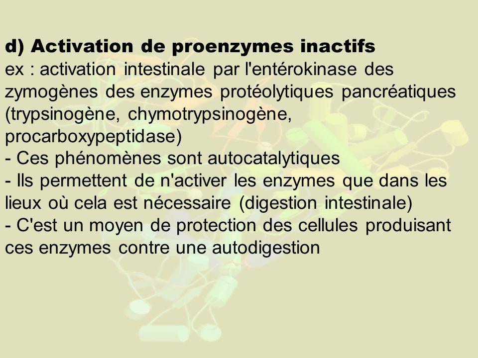 d) Activation de proenzymes inactifs ex : activation intestinale par l entérokinase des zymogènes des enzymes protéolytiques pancréatiques (trypsinogène, chymotrypsinogène, procarboxypeptidase) - Ces phénomènes sont autocatalytiques - Ils permettent de n activer les enzymes que dans les lieux où cela est nécessaire (digestion intestinale) - C est un moyen de protection des cellules produisant ces enzymes contre une autodigestion