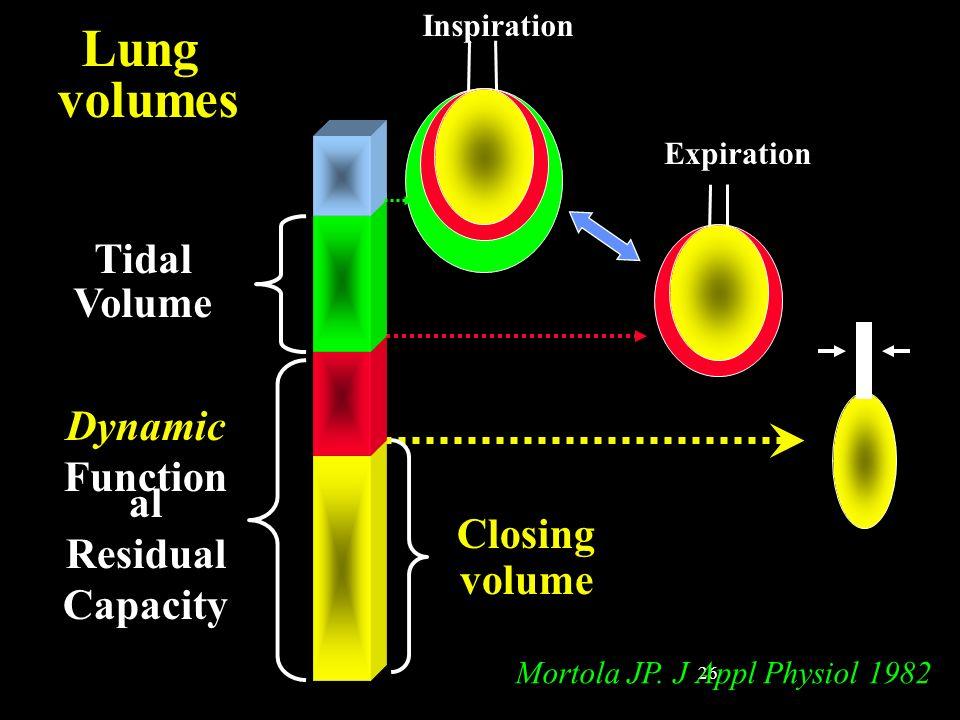 26 Closing volume Tidal Volume Dynamic Function al Residual Capacity Lung volumes Inspiration Expiration Mortola JP. J Appl Physiol 1982